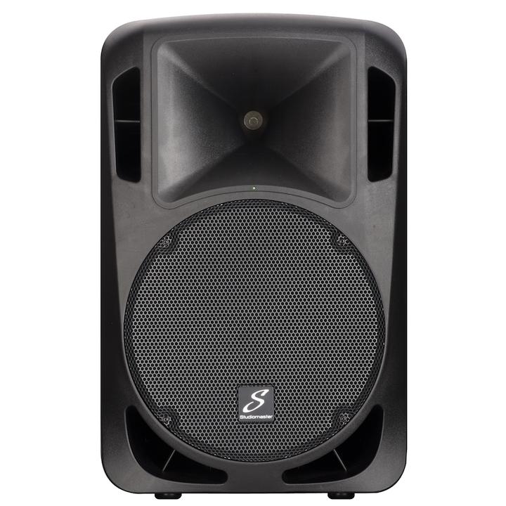 Studiomaster Drive 15 speaker cabinet front